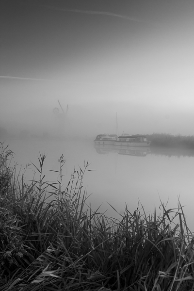 Misty Broadland