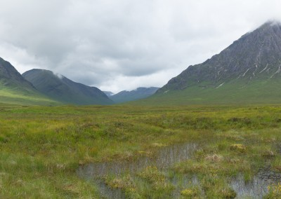 The Icons of Glencoe